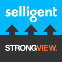 Selligent Strong View